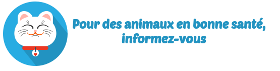 comparer mutuelle animaux